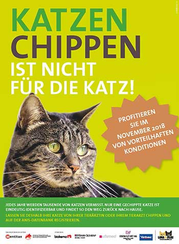 2018 katzenchip aktion